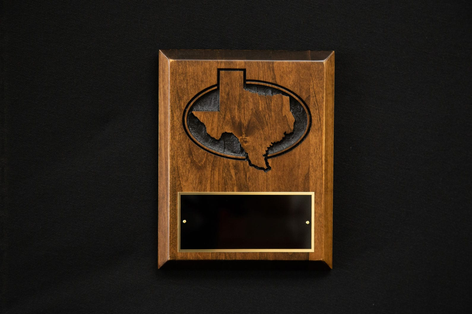 plaque-texas-sandcarved-1